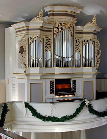 random organ photo